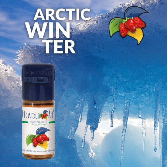 FlavourArt Arctic Winter